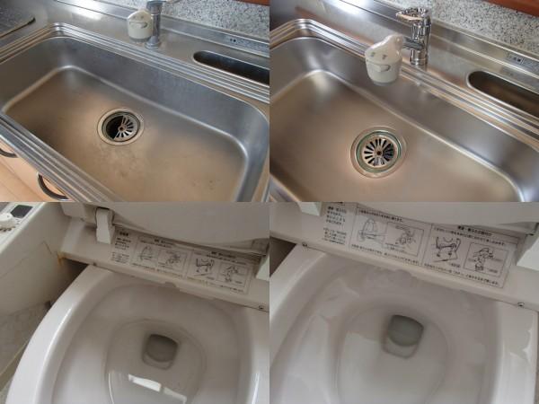 シンク磨きと1階トイレ