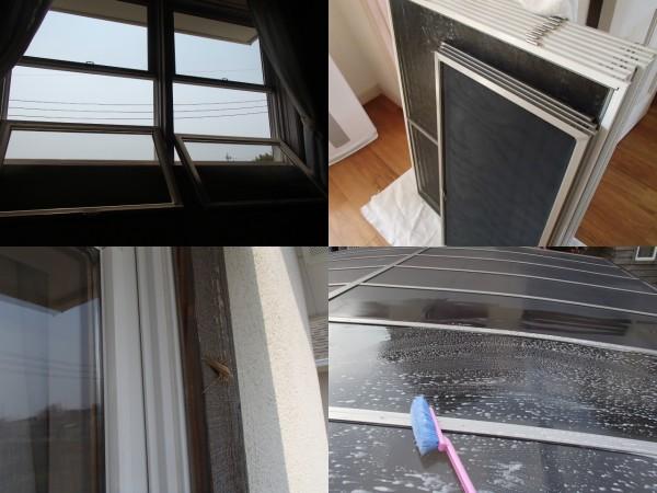 定期的な窓のお掃除とカーポートのメンテナンス