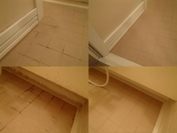 浴室のクリーニング 目地のカビ