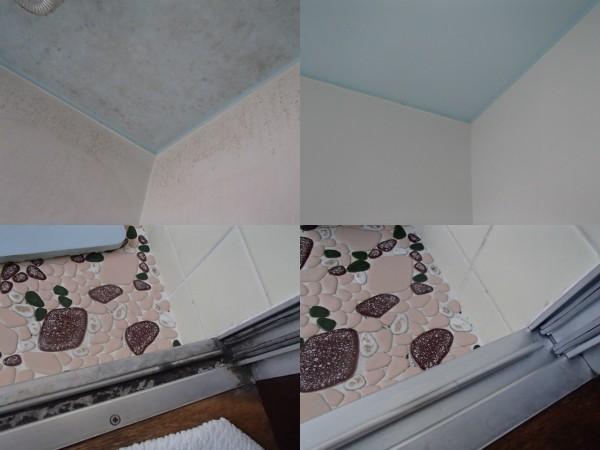 浴室の天井カビを漂白洗浄