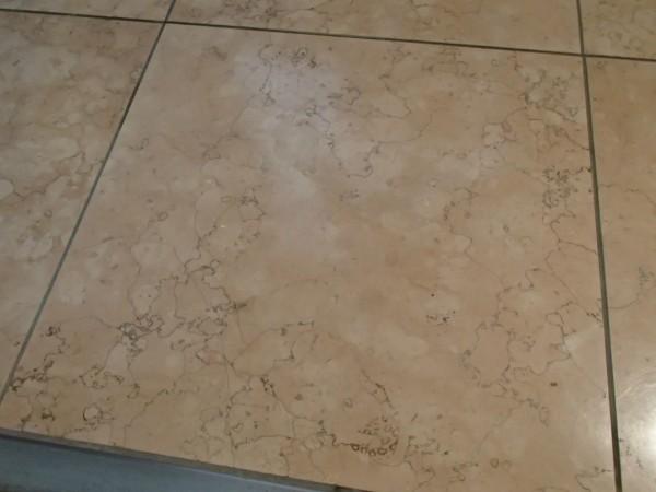 玄関の大理石タイル