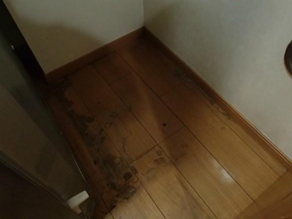 冷蔵庫の下の床