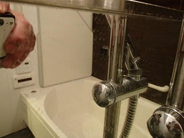 鏡とシャワーポール