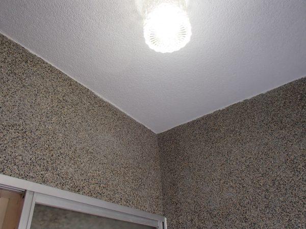 浴室壁面と天井