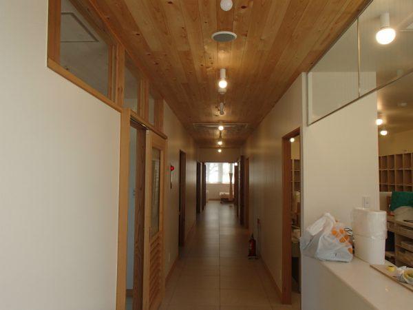 天井も無垢板材