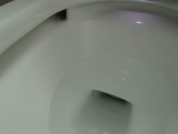 トイレ鉢内