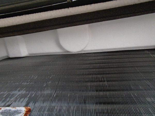 断熱材に発生したカビ