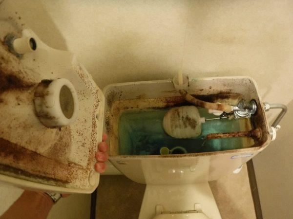 トイレタンク内