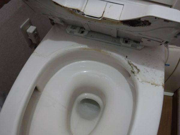 ウオシュレットのお掃除
