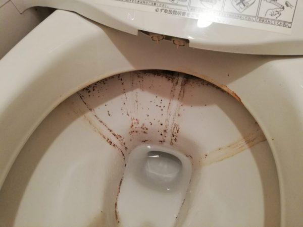 トイレ陶器鉢内