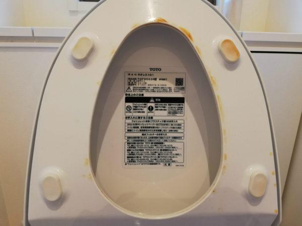 トイレ便座裏