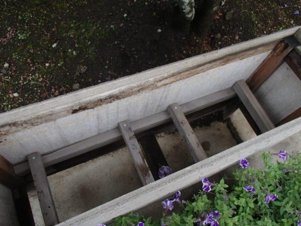 再生した花台